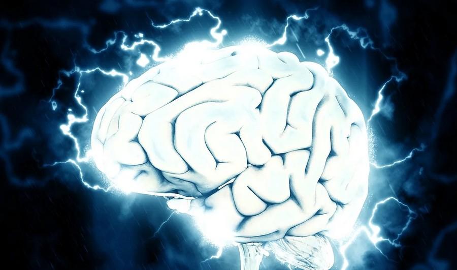 neuropsi